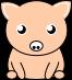 豚のイラスト3