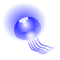 海月のイラスト1(白背景)