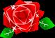 薔薇のイラスト1
