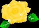 薔薇のイラスト3