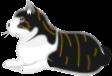 猫のイラスト19