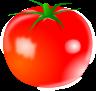 トマトのイラスト1