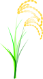稲のイラスト4