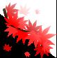 楓のイラスト2