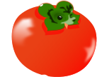 柿のイラスト4