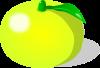 柚子のイラスト1