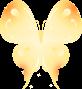 蝶のイラスト1
