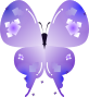 蝶のイラスト3