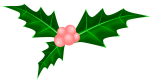 柊のイラスト2