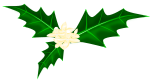 柊のイラスト4