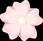 桜のイラスト5