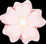 桜のイラスト6