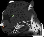 豹のイラスト3