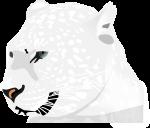 豹のイラスト4