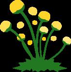 道端の花のイラスト2