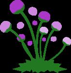 道端の花のイラスト4