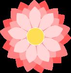 菊のイラスト1