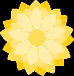 菊のイラスト2