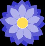 菊のイラスト3