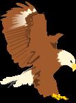 鷹のイラスト2