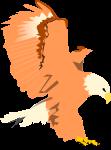 鷹のイラスト3