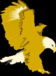 鷹のイラスト4