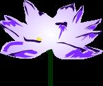 蓮の花のイラスト4