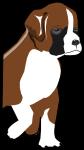 ボクサー犬のイラスト1