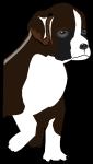 ボクサー犬のイラスト3