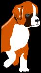 ボクサー犬のイラスト4