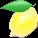 レモンのイラスト2