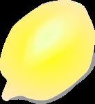 レモンのイラスト4