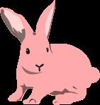 ウサギのイラスト16