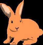 ウサギのイラスト17